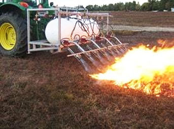 Agriculture Flame Clearing & Weeding
